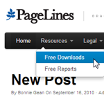 Add Pages to a WordPress Menu